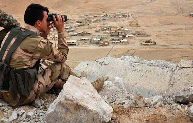 Siergiej Szojgu, szef MON Rosji ogłosił przetarg na medale dla rosyjskich żołnierzy walczących w Syrii