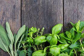Planujesz opalanie? Uważaj na te zioła!