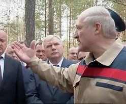 Tak wzbogaca się Łukaszenka. Nagranie z lasu