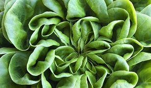 Zielone warzywa, sałatki i... kasze. Wybieraj te produkty, by cieszyć się zdrowiem