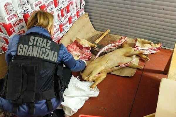 W Wólce nie sprzedawano mięsa z psów! Wietnamczycy oburzeni