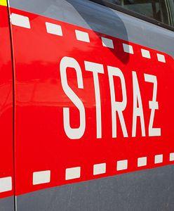 Warszawa. Pożar na Saskiej Kępie. Płonął samochód i elewacja domu