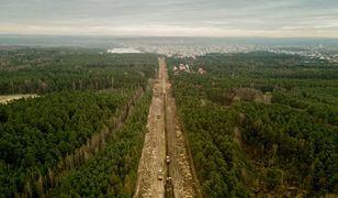 Śląskie. Nowe drzewa, budki dla ptaków i zbiorniki dla płazów w ramach budowy linii kolejowej