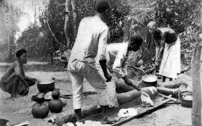 Pozyskiwanie lateksu z drzewa kauczukowego. Las Lusambo, zdjęcie wykonane przed 1905 r.