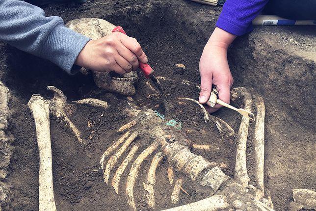 Szczątki ofiar epidemii sprzed 300 lat odkryto na Śródce