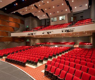 Kina i teatry mogą być otwarte już w czerwcu