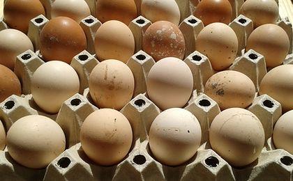 Jemy mniej jaj od naszych sąsiadów. Powód? Cena