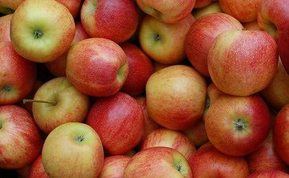 Ceny jabłek idą w górę. Wszystko przez małe zbiory i duży eksport
