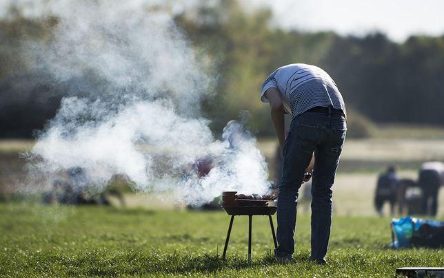 """""""Ekologiczne"""" grillowanie kosztuje. Na """"dzień dobry"""" nawet 10 razy więcej niż tradycyjne"""