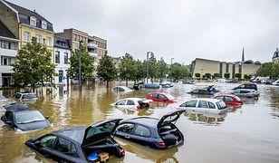 Powódź w Holandii. Mieszkańcy walczą z szabrownikami
