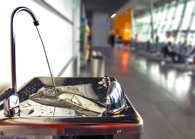 Bezpłatne źródełka na lotnisku