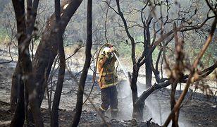 """Strażacy mogą spodziewać się """"pomocy"""" przy gaszeniu pożarów"""