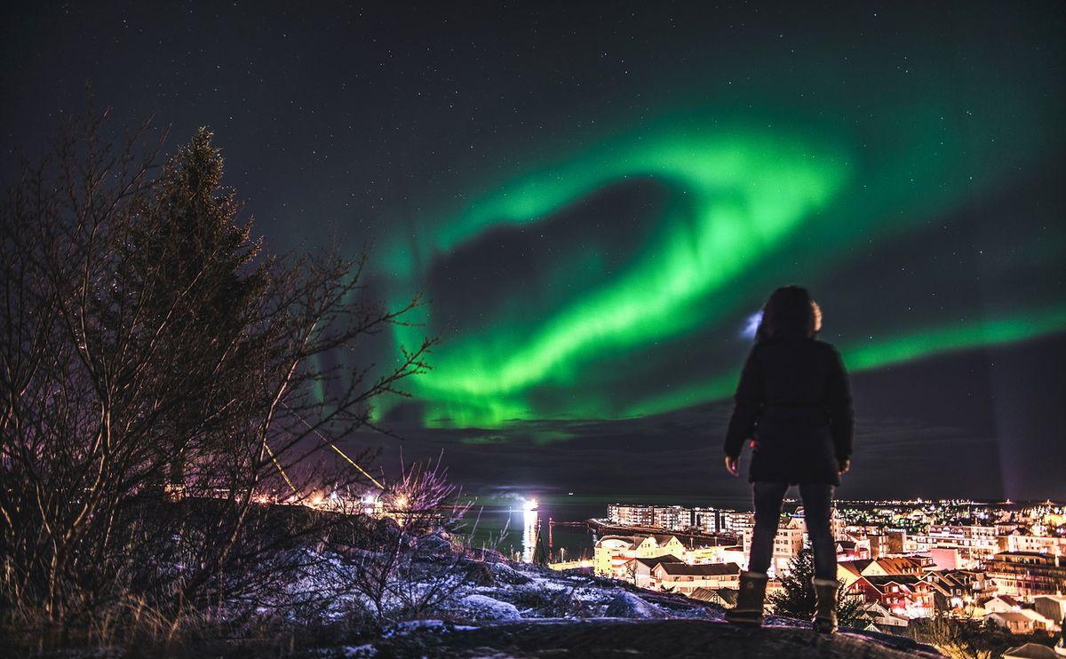 W królestwie sfermentowanej płaszczki, doradców ds. trolli i bezstresowej pracy. Witajcie na Islandii!