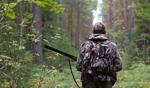 Wilki zostały zastrzelone w ciągu ostatniego miesiąca