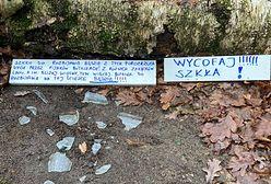 """Zdjęcia z Lasu Młochowskiego podzieliły internautów. """"A może to głos rozpaczy?"""""""