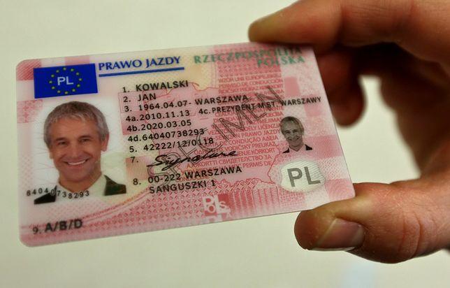 Polacy oszukują holenderskie urzędy w sprawie prawa jazdy