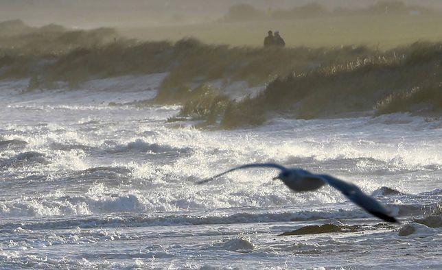 Pogoda. IMGW ostrzega: sztorm na Bałtyku