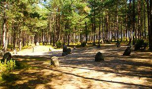 Polskie Stonehenge - magia na wyciągnięcie ręki