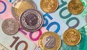 NBP gotów przeciwdziałać dużemu osłabieniu złotego