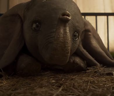 """Dumbo"" to film familijny z 2019 roku"