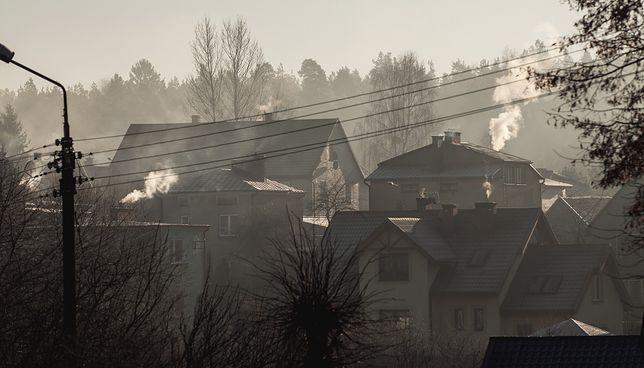 Rząd zaczyna słuchać ekspertów od smogu.