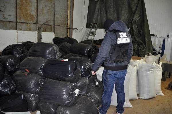 Pomorscy strażnicy graniczni zamknęli nielegalną fabrykę tytoniu w Kościerzynie