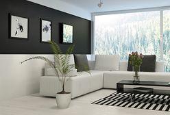 Wnętrza w czerni i bieli. Przegląd inspiracji