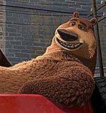 Gdy niedźwiedź trafia do lasu
