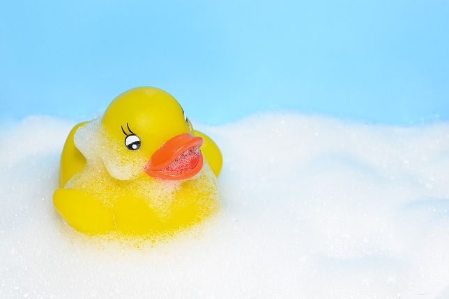 Kaczka kąpielowa nie taka sympatyczna, na jaką wygląda