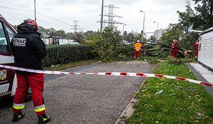 Pogoda. Synoptycy ostrzegają przed wichurami. Powalone drzewa tarasują ruch na drogach i torach, niszczą dachy, zrywają linie energetyczne. Są też pierwsze ofiary