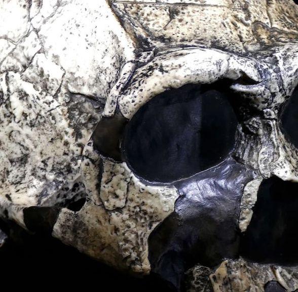 Bułgaria. Homo sapiens był tam dwa tysiące lat wcześniej, niż zakładano.