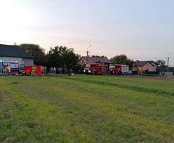 Wypadek na Mazowszu. Motocyklista zderzył się z koniem