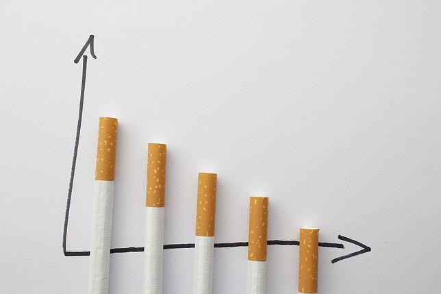 Apel medycznych autorytetów. Polacy powinni się dowiedzieć o mniej szkodliwych produktach do palenia