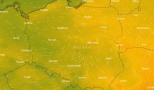 Pogoda długoterminowa. Jakie będzie lato? IMGW ma świetne wieści dla urlopowiczów