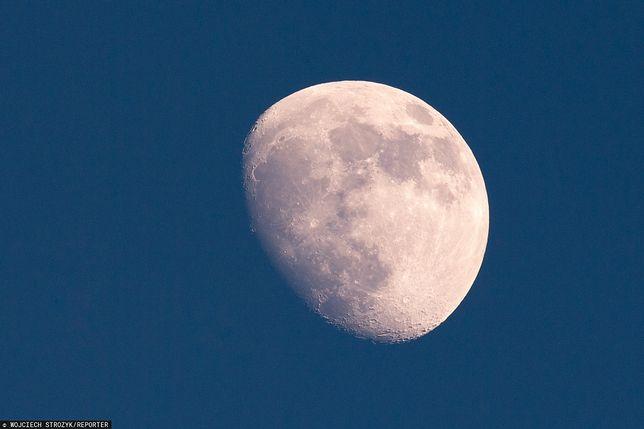 Ziemia ma drugi księżyc.