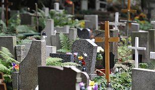 Policjanci sprawdzają, gdzie teraz znajdują się szczątki pochowanych osób