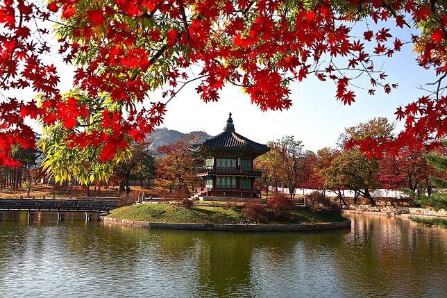 Korea Południowa zyskuje popularność wśród europejskich turystów