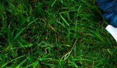 Brudne dzieci to szczęśliwe dzieci. Jak pozbyć się plam z ubrań naszych pociech?