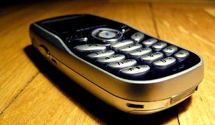Raport GUS nt. telefonii komórkowej w Polsce