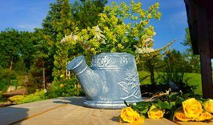 Kwiaty idealne na balkon