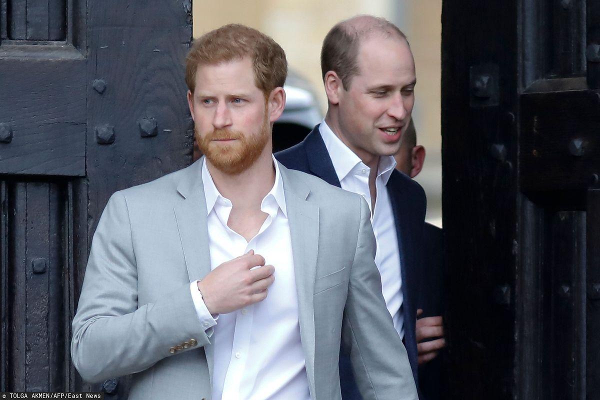 Harry i książę William