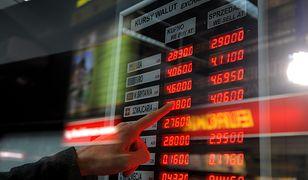Dolar numerem jeden w kantorach. Jakie waluty wymieniają Polacy?