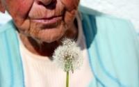 Leczenie alzheimera. Kurkumina będzie wykorzystana w terapii?