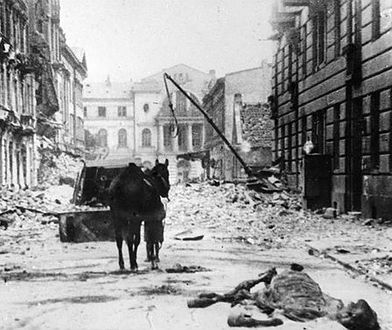 77 lat temu wybuchła II wojna światowa