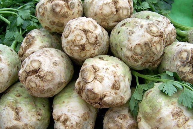 Korzeń selera – właściwości, kalorie, zastosowanie w kuchni, przepisy