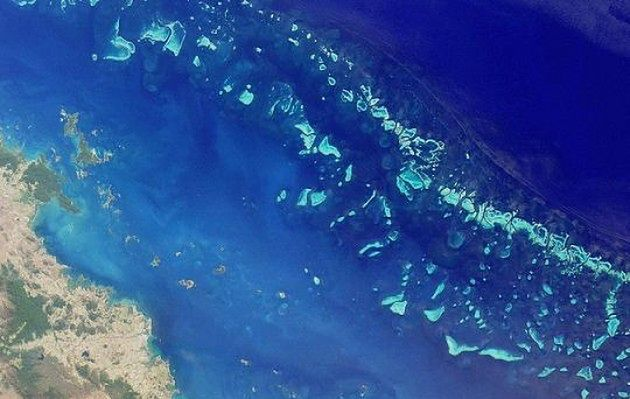 Wielka Rafa Koralowa, Australia