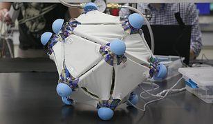 Dzięki mechanicznej warstwie, wszystko można przeistoczyć w robota
