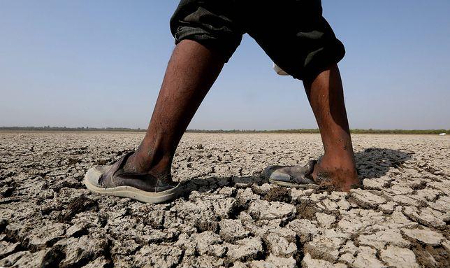 Z powodu upałów wyschła część największego indyjskiego jeziora - Bhojtal