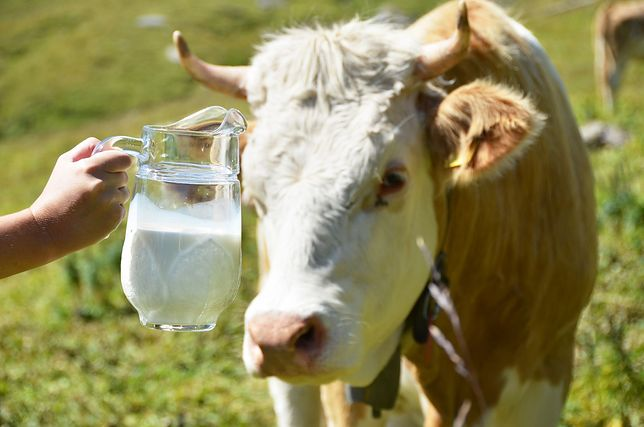 Do końca roku ceny mleka będą rosły - prognozują analitycy