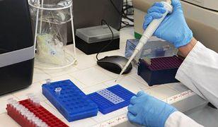 Naukowcy wyhodowali laboratorium groźną mutację wirusa H5N1